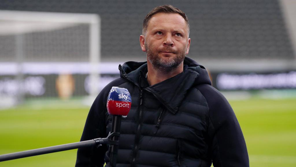 Pál Dárdai kämpft mit Hertha BSC um den Klassenerhalt