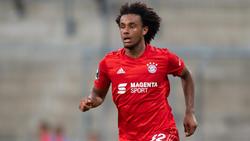 Die Junioren des FC Bayern gewannen gegen Tottenham