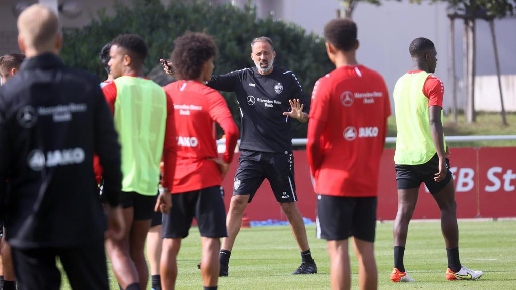 Fordert gegen Bochum einen Sieg: Stuttgarts Trainer Pellegrino Matarazzo (M.)