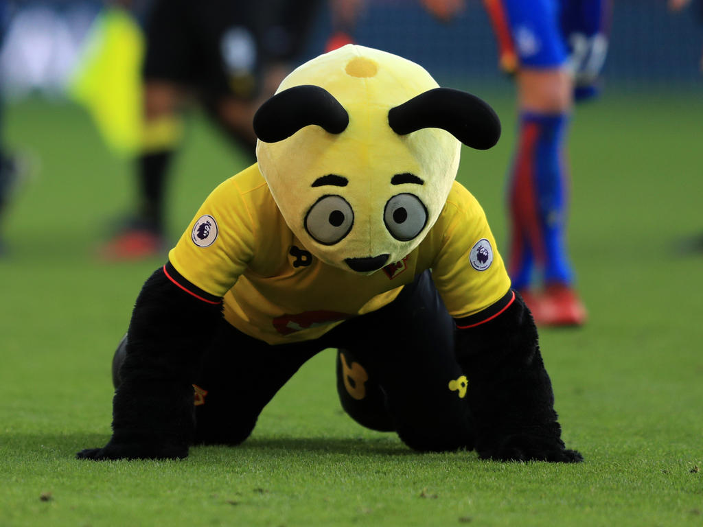 Harry the Hornet in Action