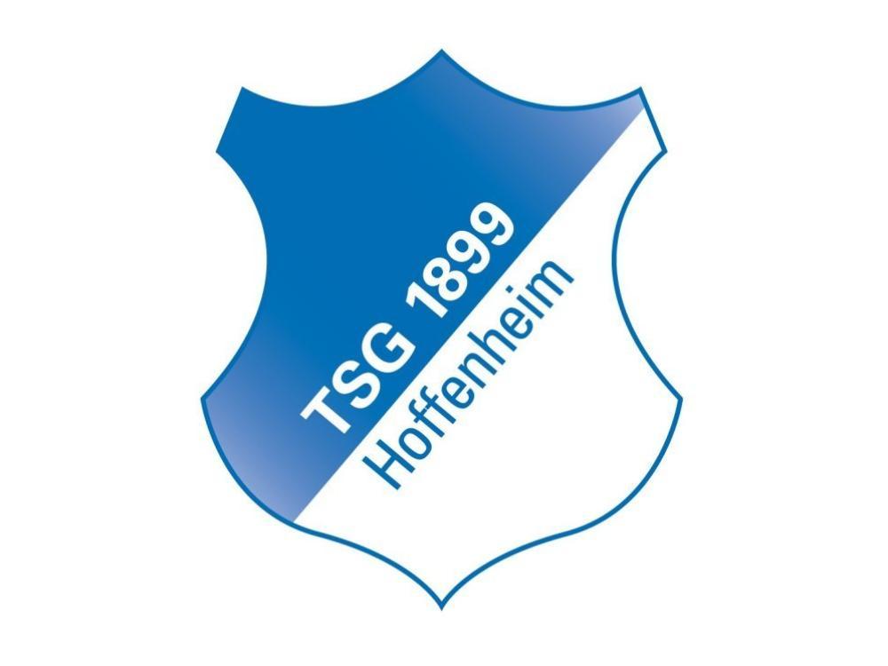 1899 Hoffenheim ist das Aushängeschild der Rhein-Neckar-Region