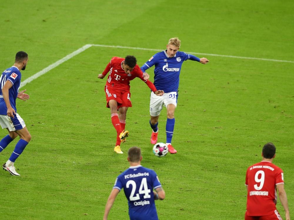 Musiala (2.v.l.) traf gegen Schalke zum 8:0