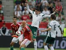 Nordirland rettet einen Punkt gegen Ungarn