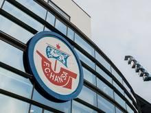 Wegen Fans: Hansa Rostock muss Geldstrafe zahlen