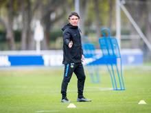"""Bruno Labbadia: """"Gucken nach jungen Spielern"""""""