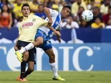Raul Jimenez (l.) wechselt wohl zu Atlético Madrid