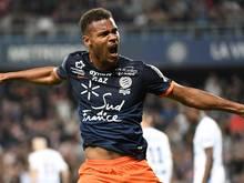Steve Mounié wechselt zu Huddersfield Town