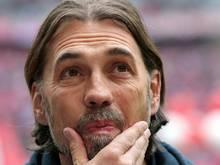 Trainer Martin Schmidt und Mainz verlieren in Roterham 1:2