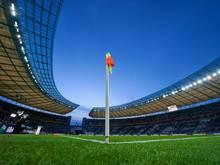 Der BFC weicht gegen Köln ins Olympiastadion aus